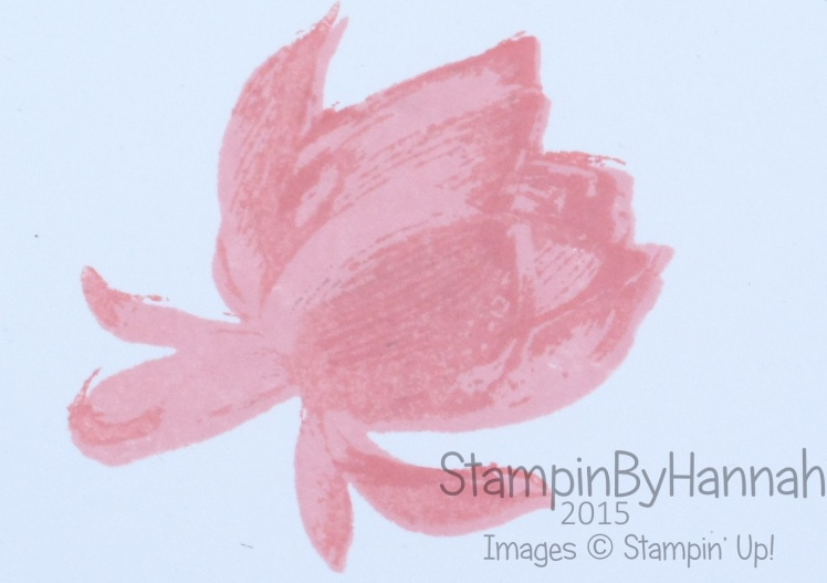 Stampin' Up! UK Lotus Blossom how to stamp