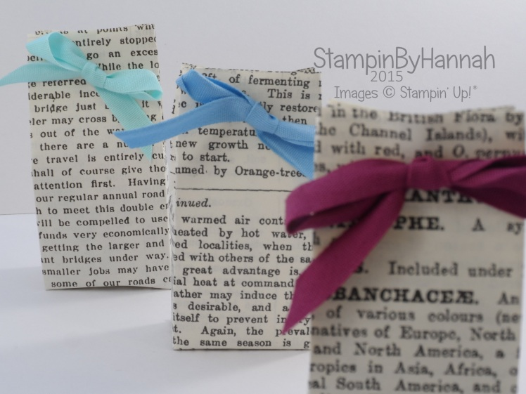 Stampin' Up! UK Telford swap mini chocolate gift bag