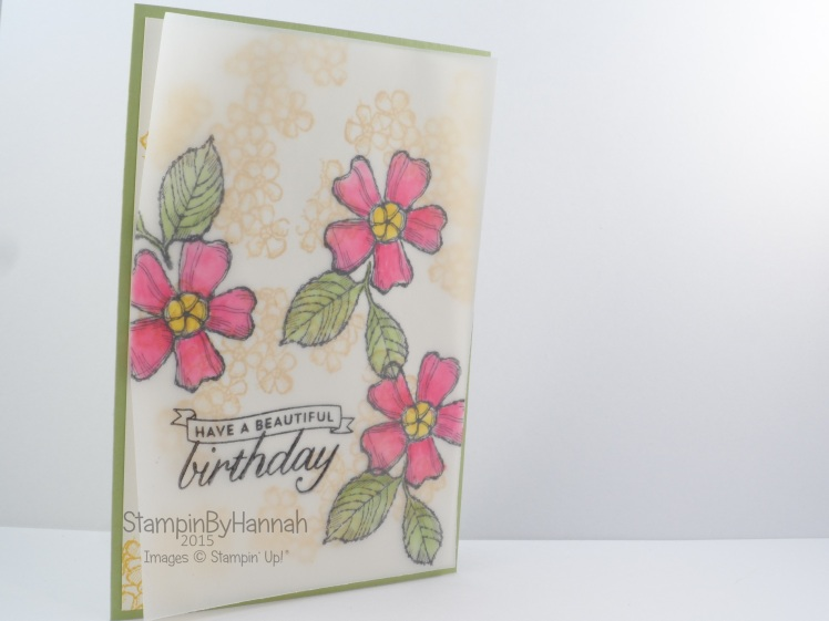 Stampin' Up! UK Birthday Blossoms Vellum