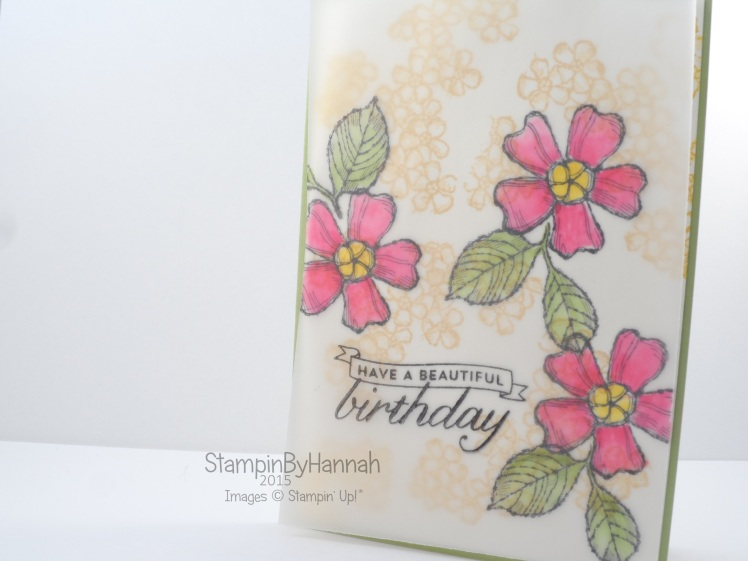 Stampin' Up! UK Blender Pens on vellum