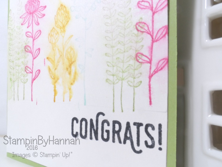 Stampin' Up! UK Congrats Sale-a-bration