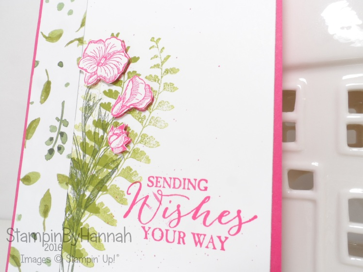 Stampin' Up! UK Butterfly Basics Thinking of you card