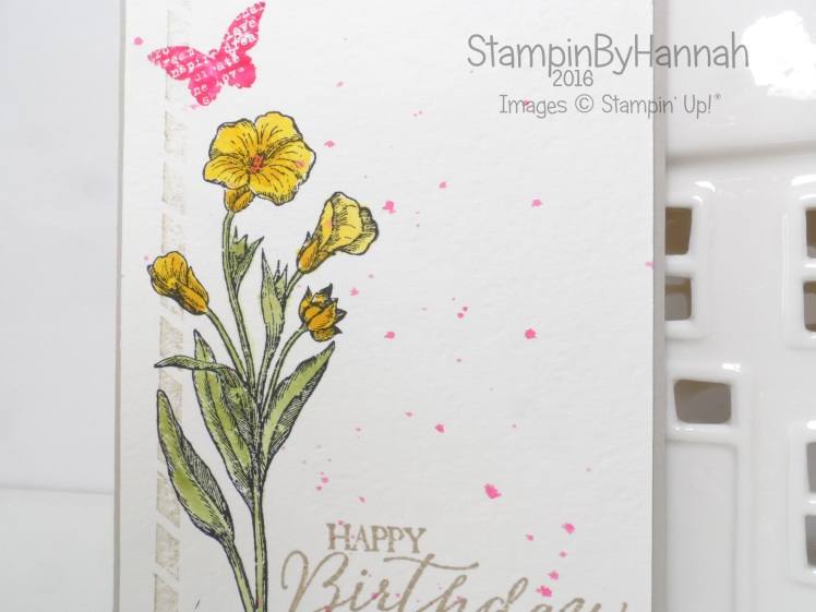 Stampin' Up! UK Butterfly Basics Week Birthday card