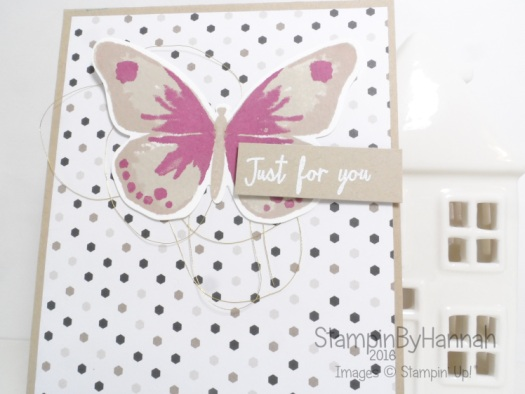 Watercolour wings 2 step stamping using stampin up uk products