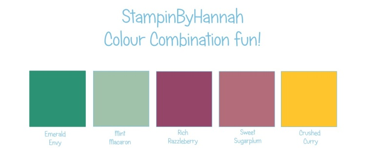Stampin' Up! UK Colour Combination Emerald Envy Mint Macaron Rich Razzleberry Sweet Sugarplum Crushed Curry