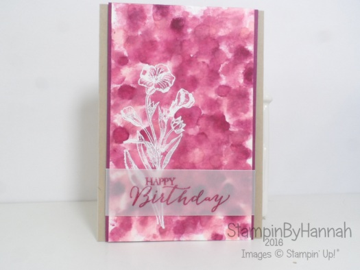 Pootles Colour Challenge Birthday Card using Butterfly Basics from Stampin' Up!