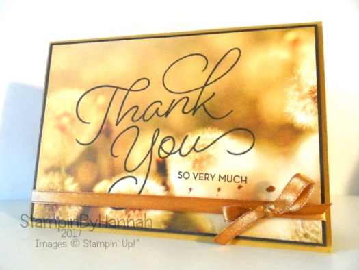Thank you card usng So Very Much from Sale-a-bration 2017 Stampin' Up! UK