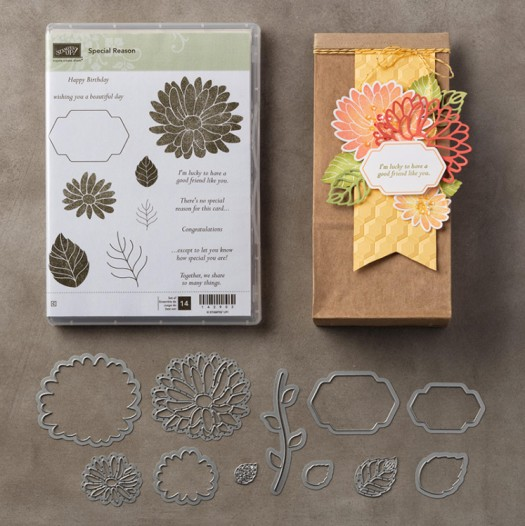 Special Reason from Stampin' Up!