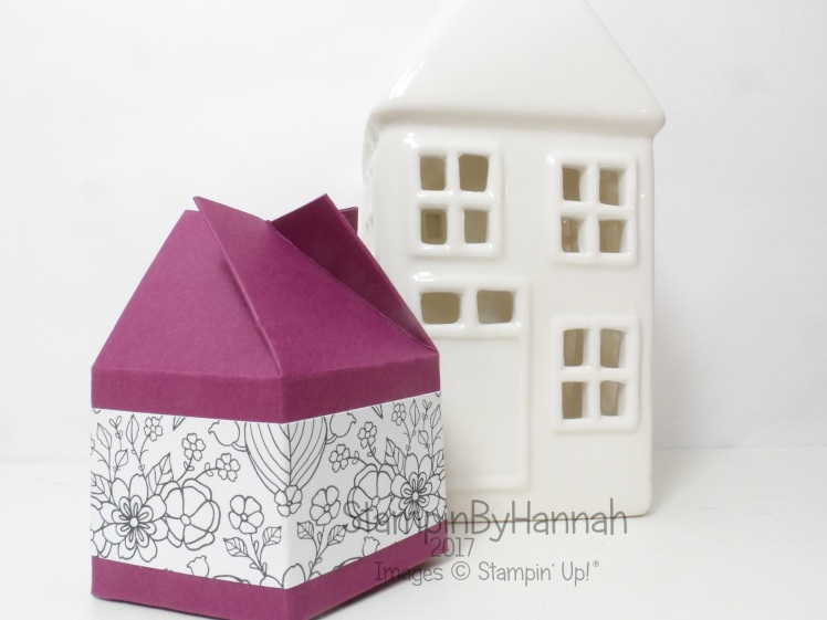 3D Friday Video Tutorial 5 sided twist and close box using Inside the Lines from Stampin' Up! UK
