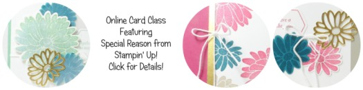 Special Reason Online Card Class using Stampin' Up! UK Supplies