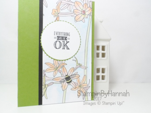 Make It Monday Sale-a-bration special using Stampin' Up! watercolour pencils and Inside the Lines Designer Series Paper