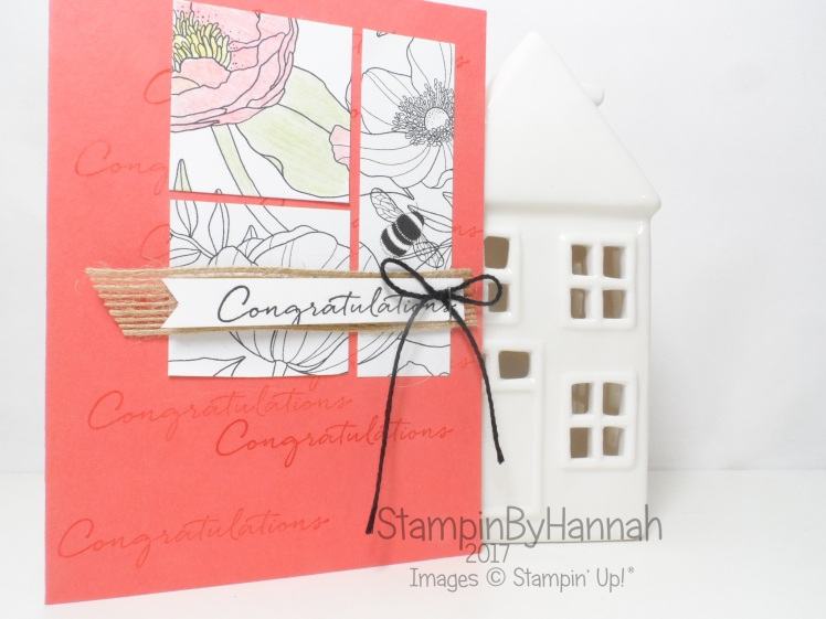 Make It Monday Colouring Inside the Lines Designer Series Paper with Stampin' Up! Watercolour Pencils
